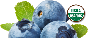 Blueberry-png-11